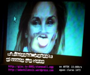 AdaChilensis Turingmix, Taller de transmisión de video en tiempo real con herramientas libres